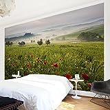 Bilderwelten Vliestapete - Toskana Frühling - Fototapete Quer Vlies Tapete Wandtapete Wandbild Foto, Größe HxB: 190cm x 288cm
