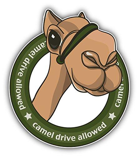 camel-drive-allowed-de-haute-qualite-pare-chocs-automobiles-autocollant-10-x-12-cm