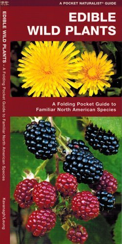 Edible Wild Plants: A Folding Pocket Guide to Familiar North American Species (Pocket Naturalist Guide Series) by Kavanagh, James (2001) Pamphlet