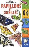 Papillons et chenilles / Léon Rogez | Rogez, Léon. Auteur