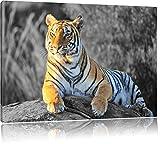 wunderschöner stolzer Tiger schwarz/weiß Format: 120x80 auf Leinwand, XXL riesige Bilder fertig gerahmt mit Keilrahmen, Kunstdruck auf Wandbild mit Rahmen, günstiger als Gemälde oder Ölbild, kein Poster oder Plakat