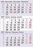 HiCuCo Kalendarien (magnetische Kalenderblöcke) für 2 Jahre (2019+2020) passend für 3-Monats-Tischkalender Edelstahl TypA