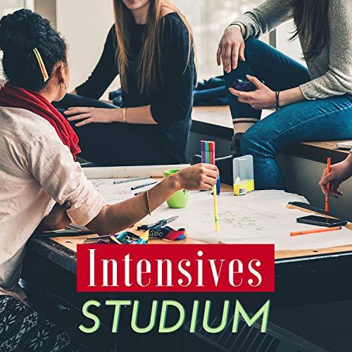 Intensives Studium: Instrumentalmusik zur Vorbereitung von Hochschulprüfungen, Schultests, Präsentationen