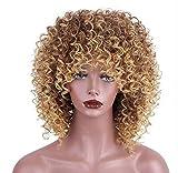 RY@ gemischte braune und blonde Haarfaser, lange Synthetik-Haare, kurze Synthetik-Haare verworrene, lockige Afro-Perücke für schwarze Damen.