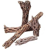 OrinocoDeco Vuka Madera/Cholla Wood diferentes tamaños