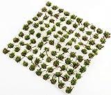 WWS Waldbodenbedeckung Sommer 4mm Selbstklebende Statische Grasbüschel x 100