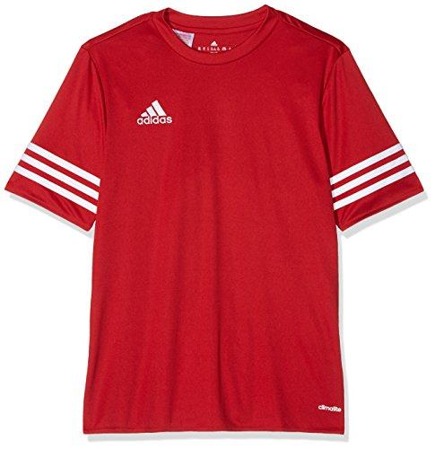 Adidas Kinder Trikot Entrada 14, rot / weiß, 152, F50485 (Adidas Kinder Trikot)