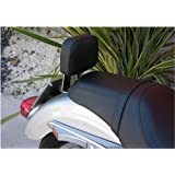 GZM respaldo para pasajero trasera/Sissy Bar con desmontaje rápido para Harley Davidson Sportster