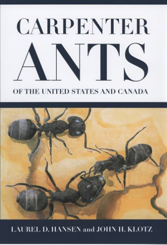 carpenter-ants-of-the-united-states-and-canada