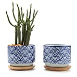 T4U 7.5CM Ceramic Japanese Style Serial No.3 Succulent Plant Pot/Cactus Plant Pot Flower Pot/Container/Planter White Package 1 Pack of 2