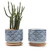 T4U 7.5CM Keramik Sukkulenten Töpfe Kaktus Pflanze Töpfe Mini Blumentöpfe Japanische Stil Serie No.3 mit Bambusuntersetzer Weiß 2er Set