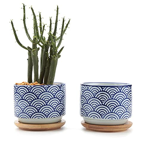 T4U 7.5CM Ceramic Japanese Style Serial No.3 Sucuulent Plant Pot/Cactus Plant Pot Flower Pot/Container/Planter White Package 1 Pack of 2