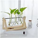 Yookoon terrario in vetro trasparente vaso tre bottiglie con cornice in legno di pino casa giardino ristorante desktop decorazioni (16x 11,9x 27,9cm)