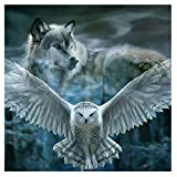 WATYW DIY Diamond Painting 5D Full Diamond 2.8 Round Diamond Owl And Wolf Ricamato a Punto Croce Ricamo Soggiorno Camera da Letto casa Decorazione 30 x 30 cm