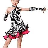 FNKDOR Mädchen Tanzkleid Latein Kleid Ballsaal Tanz Kostüme Lateinkleid (Höhe 140 cm, Gestreift)