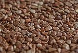 Terralith Marmor-Steinteppich 4-8 mm Marone für 1qm incl. Bindemittel