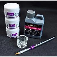 Tongshi Simplemente pro del arte del clavo Kits de polvo líquido de acrílico de la pluma Däppen Herramientas plato Set