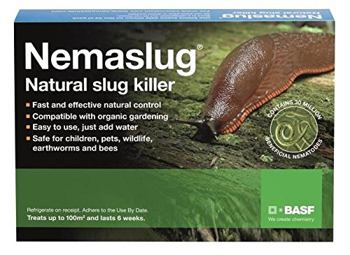 Nemaslug Slug Killer large pack 100sm