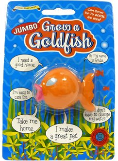 jumbo-grow-a-goldfish-funny-birthday-present