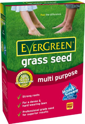 evergreen-multi-purpose-grass-seed-carton-16-kg