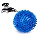 Giocattoli del cane da masticare palla, TPR gonfiabile galleggiante denti pulizia Spiky Ball Dog Squeaky Toy for Small Medium aggressive Chewers training Playing chewing by Hongyh