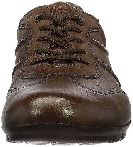 Lloyd Armin, Sneakers basses homme Marron (Cognac)