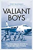 : Valiant Boys: True stories from the Operators of the UK's First Four-Jet Bomber