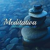 Mindfulness träning