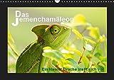 Das Jemenchamäleon (Wandkalender 2019 DIN A3 quer): Ein kleiner Drache stellt sich vor (Monatskalender, 14 Seiten ) (CALVENDO Tiere)
