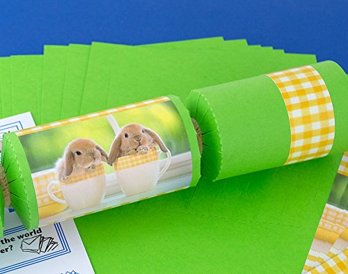 8-spring-green-cute-bunnies-make-fill-your-own-easter-party-crackers-kit