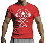 net-shirts GYM TONIX - SPARTAS LAW T-Shirt Motivation Mode Fitness Bodybuilding Crossfit Beast Gym , Größe L, rot
