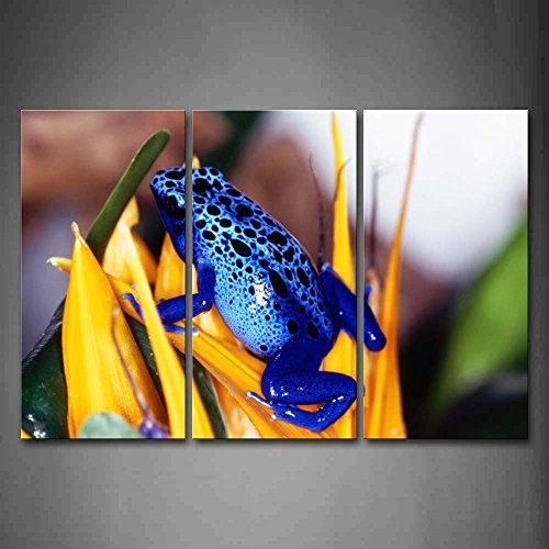 blue-poison-dart-frog-stay-on-yellow-leaf-wall-art-painting-pictures-print-on-canvas-animal-the-pict