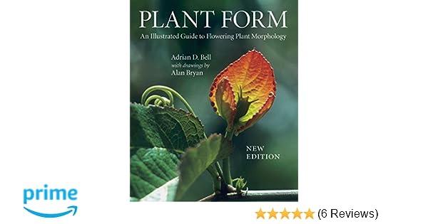Plant Form Barearsbackyard