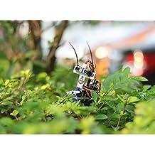 In ZIYUN Insect bot,DIY robots