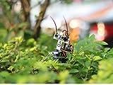 seeedstudio montage roboter - insekt bot microcontrol ir - arduino - diy - maker open source booole