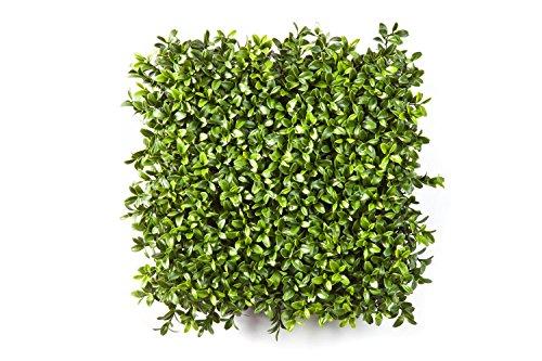 artplants Set 2 x Künstliche Buchsbäume Matte Tom, 300 Blätter, grün, 25 cm – Buchs künstlich/Kunstpflanzen