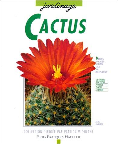 Cactus : Des variétés pour l'appartement, le balcon et la terrasse