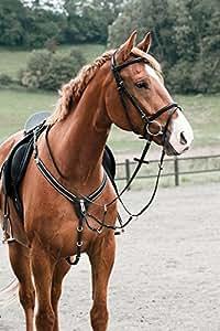 CATAGO amovible bricole élastique avec martingale-poney-noir