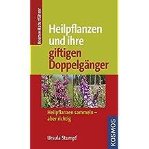 Heilpflanzen und ihre giftigen Doppelgänger: Heilpflanzen sammeln - aber richtig