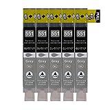 5 Druckerpatronen kompatibel zu CLI-551GY Grau für Canon Pixma IP7250 IX6850 MG5450 MG5550 MG5650 MG6350 MG6450 MG7150 MX725 MX925 IP8750