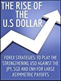 THE RISE OF THE U.S DOLLAR: FOREX STRATEGIES: TO PLAY THE STRENGTHENING USD AGAINST THE JPY, SGD AND CNH FOR LARGE ASYMMETRIC PAYOFFS (TRADING FOREX) (English Edition)