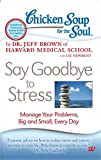 #9: Chicken Soup for the Soul: Say Goodbye to Stress: Manage Your Problems, Big and Small, Every Day