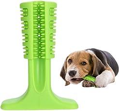 Yanuoda Hunde Zahnbürste mit Zahnpflege, Kauen Zähne Putzen Spielzeug für Klein Hunde, Katzen, die Meisten Haustiere, Geschenk für Haustiere Liebhaber (Grün)