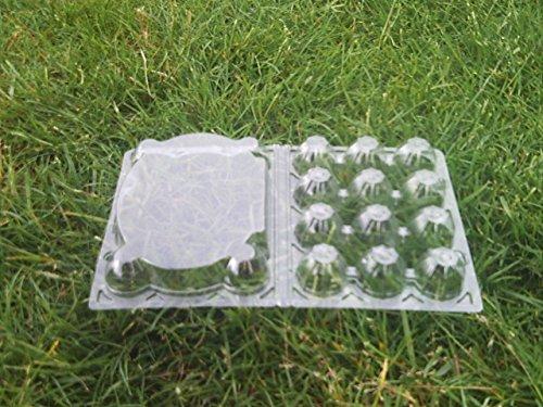Quail Egg Boxes x 100 1