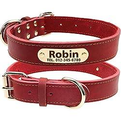 TagME Collar de Perro de Cuero Personalizado,Placa de Identificación Grabada con Nombre y número de Teléfono,Se Adapta a Perros Medianos,Rojo Coral