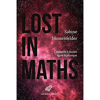 Lost in Maths: Comment la beauté égare la physique