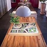 Miniaturgarten - Zimmergarten, kleiner mobiler Garten - der Garten für die Wohnung - Grundversion Buche hell gewachst
