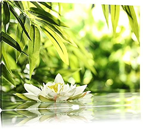 Weiße Seerose im Wasser Wellness Format: 100x70 auf Leinwand, XXL
