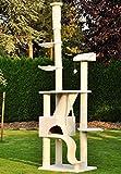 nanook Katzen-Kratzbaum SIGURD XXL deckenhoch (275 cm) und standfest mit großer Höhle, 2 Liegemulden, schwere Qualität, Kratzstämme 11 cm Ø - weiß