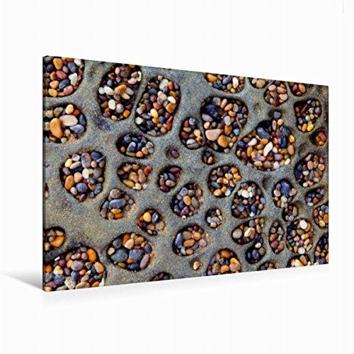 Calvendo Premium Textil-Leinwand 120 cm x 80 cm quer Pebble Beach, Tafoni (höhlenartige Merkmale in Sandstein), Bean Hollow State Park, Kalifornien, USA | Leinwand, Leinwanddruck Orte Orte